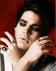 Adam Lambert wallpapers and professional photo shoots
